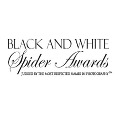 Black and White Spider Awards, 2009