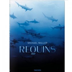 Michael Muller. Requins.